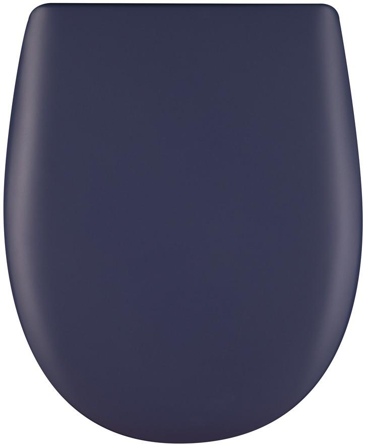Ariane bleu roi